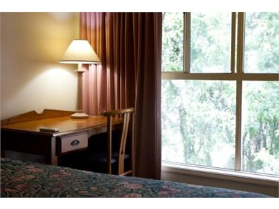 Fully Furnished Room $125pw close to UQ St Lucia