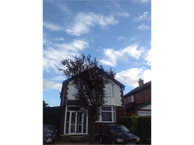 Homestay host - nottingham, friendly family in quiet residential area